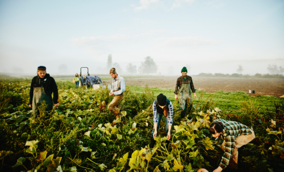 Our Commitment to Sustainable and Ethical Sourcing