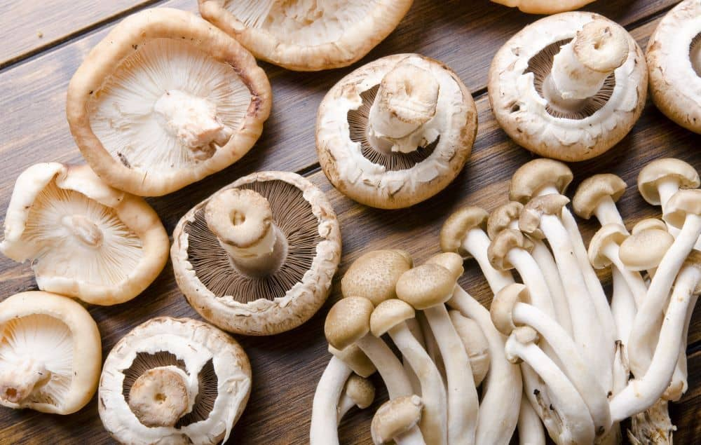 Eating raw or lightly cooked edible mushrooms ensure the highest antioxidant content.