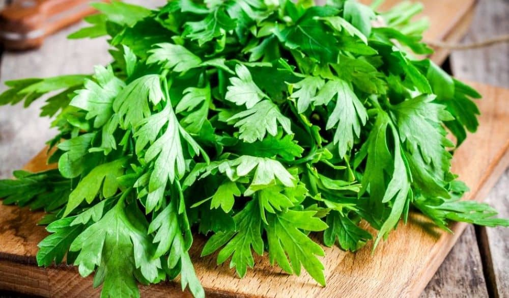 Parsley is rich in antioxidants and has cancer-fighting substances.