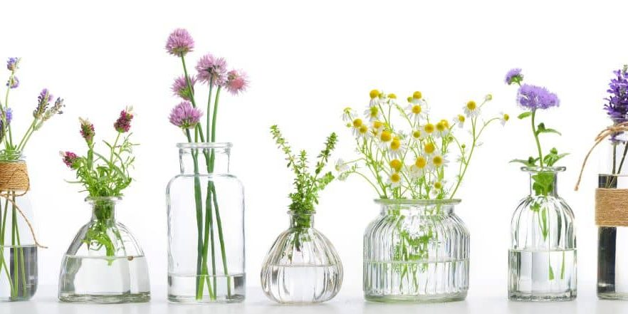 Essential oils can be used as part of treatment for a number of health issues, the most common ones being stress, anxiety, fatigue, insomnia.